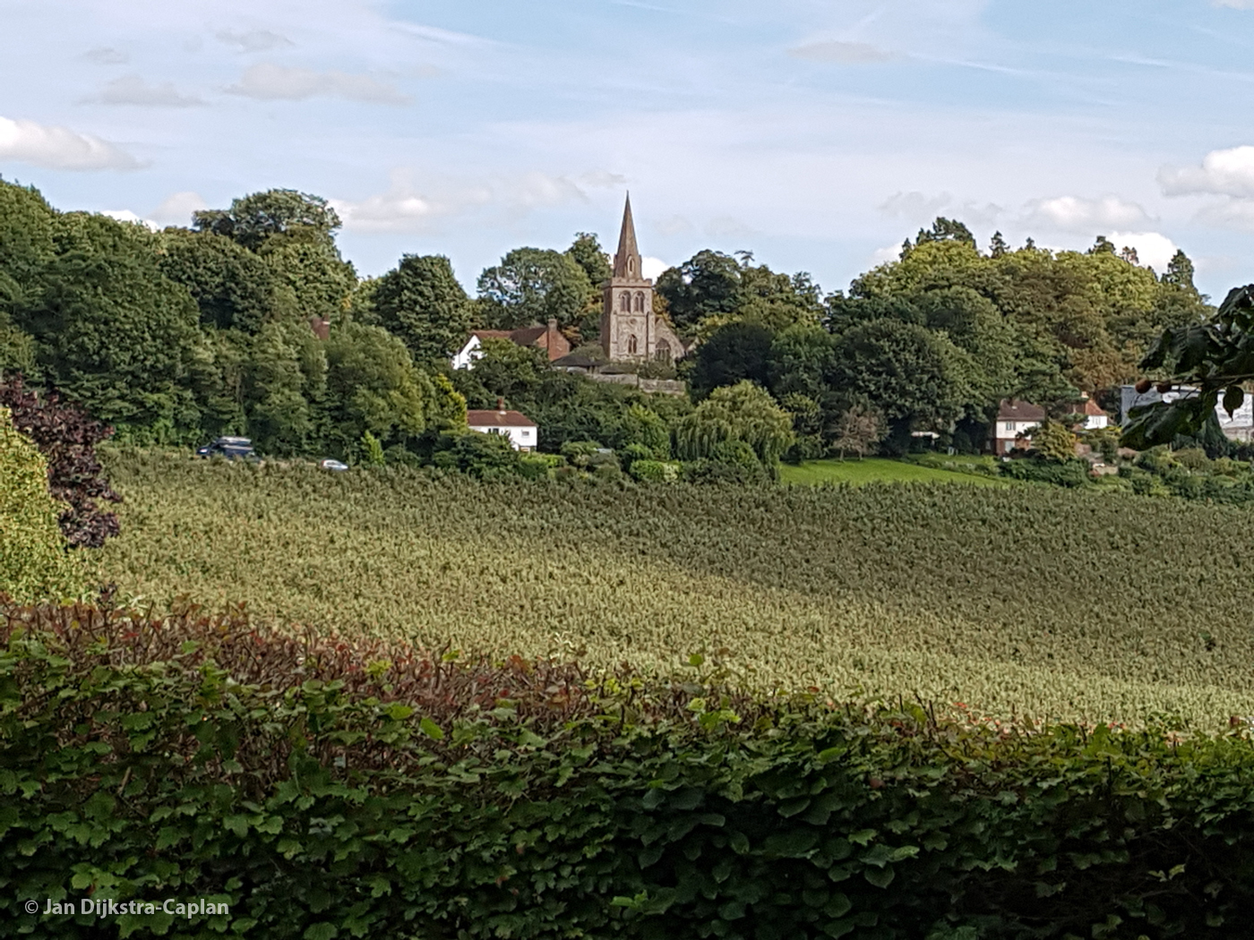 Linton Church from the Greensand Ridge