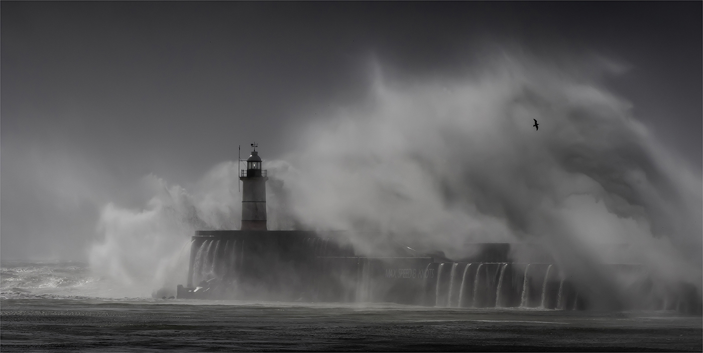 First Light at Newhaven by Roger Parker - 18