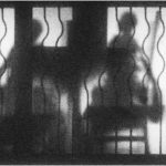 1st Place - Lunchtime Silhouette by Janis Spice ARPS, LRPS, CPAGB