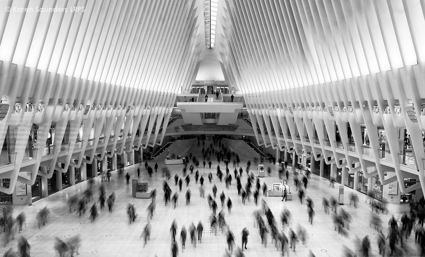 The Swarm From The Ny Subway