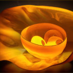 3rd Place - Blown Glass Bowl Sculpture by Dale Chihuli by Ray Bridges LRPS, CPAGB, ADPS, BPE3